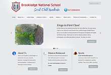 Brooklodge National School